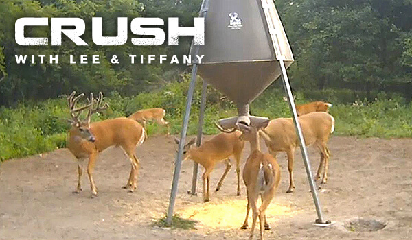 Crush with Lee & Tiffany Deer Cam