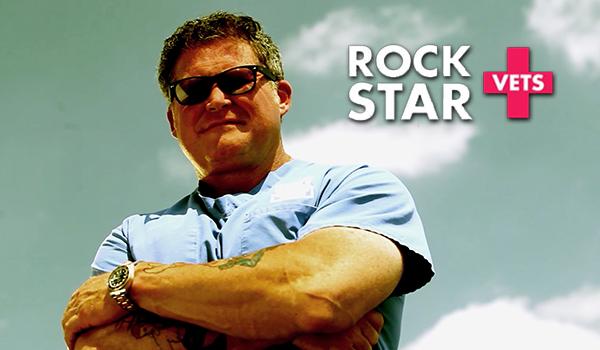 Watch Rockstar Vets